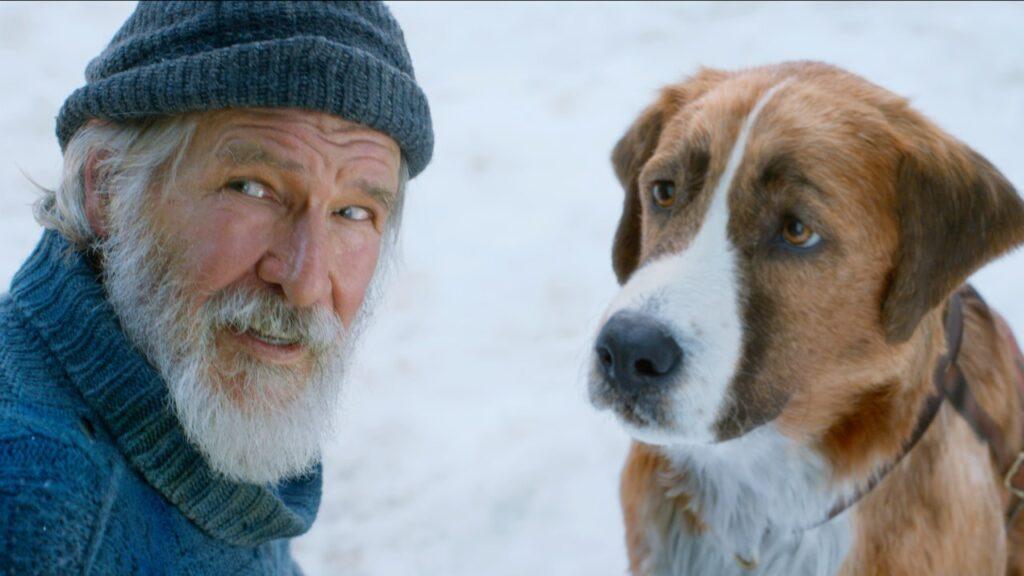 Il Richiamo della Foresta: Il nuovo film con Harrison Ford da oggi su Disney+