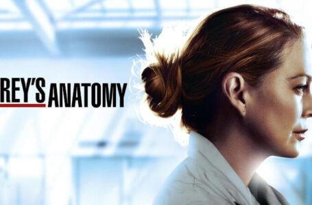 Grey's Anatomy, previsti meno episodi per la 17esima stagione