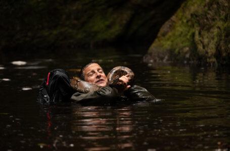 Scuola di sopravvivenza: Missione safari, Netflix rilascia il trailer del nuovo film interattivo