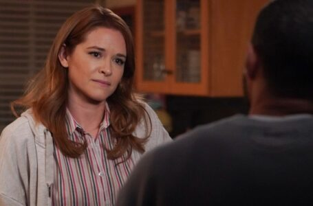 """Grey's Anatomy, Sarah Drew e il """"ritorno speciale"""" di April"""